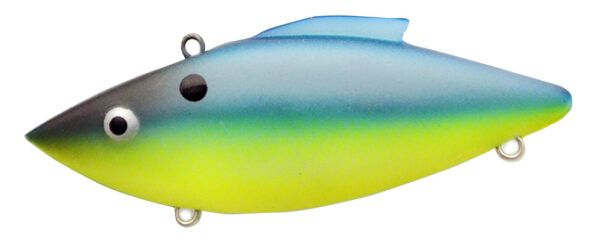 BRIGHT BELLY SHAD-648